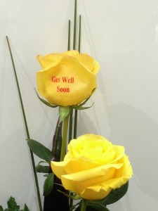 Get Well Wishes Printed On Flowers